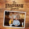 Oui Oui Terr-y - The Bradshaw Bunch