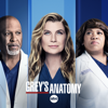 Grey's Anatomy - With a Little Help from My Friends  artwork
