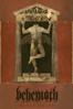 Dariusz Szermanowicz - Behemoth: Messe Noire  artwork