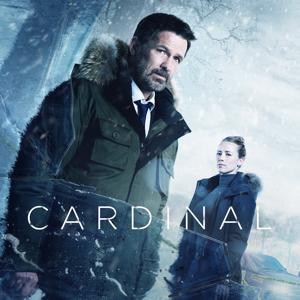 Cardinal, Season 1