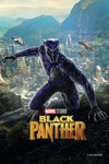 Black Panther / Captain America Civil War 2 Movie Bundle