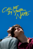 Luca Guadagnino - Call Me By Your Name  artwork