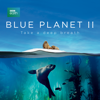 Blue Planet II - Blue Planet II  artwork