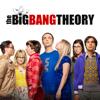 The Big Bang Theory - The Stockholm Syndrome  artwork