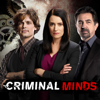 Rule 34 - Criminal Minds