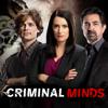 Twenty Seven - Criminal Minds