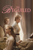 Sofia Coppola - The Beguiled (2017)  artwork