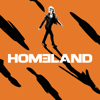 Homeland - Enemy of the State  artwork