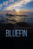 John Hopkins - Bluefin  artwork