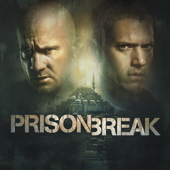 Prison Break, Saison 5 (VF)