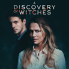 A Discovery of Witches - Das Buch des Lebens  artwork