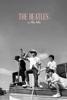 The Beatles: In The Life - Matt Salmon