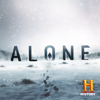 Alone - The Fly  artwork