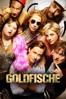 Die Goldfische - Alireza Golafshan