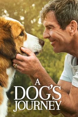 A Dog's Journey HD Download