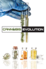 J. Michael Long - Cannabis Evolution  artwork