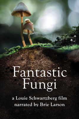 Fantastic Fungi Movie Synopsis, Reviews
