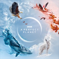 A Perfect Planet - A Perfect Planet Reviews
