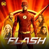 The Flash - The One with the Nineties artwork