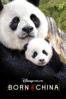 Lu Chuan - Disneynature: Born In China  artwork