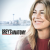 Grey's Anatomy - I Walk the Line  artwork