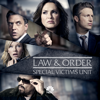 Remember Me Too - Law & Order: SVU (Special Victims Unit)