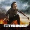 The Walking Dead - Wrath  artwork