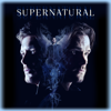 Supernatural - Supernatural, Season 14  artwork