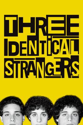 Tim Wardle - Three Identical Strangers  artwork