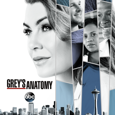 Grey's Anatomy, Season 14 HD Download