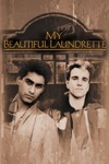 My Beautiful Laundrette wiki, synopsis