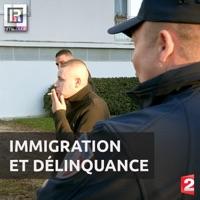 Télécharger Immigration et délinquance Episode 1