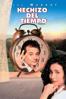 Hechizo del tiempo (Groundhog Day) - Harold Ramis