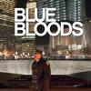 Blue Bloods - Volles Risiko  artwork