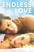 無盡的愛 Endless Love (2014)
