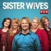 Sister Wives, Season 7 wiki, synopsis