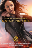 Francis Lawrence - The Hunger Games: Catching Fire  artwork