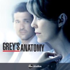 Grey's Anatomy, Staffel 11