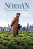 Norman: The Moderate Rise and Tragic Fall of a New York Fixer - Joseph Cedar