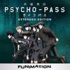 Psycho Pass, Extended Edition (Original Japanese Version) wiki, synopsis