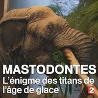 Télécharger Mastodontes, l'énigme des titans de l'âge de glace Episode 1