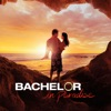 Bachelor in Paradise, Season 2 - Synopsis and Reviews