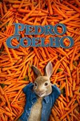 Pedro Coelho
