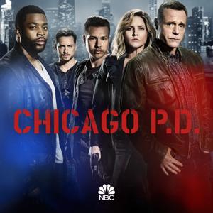 Chicago PD, Season 4