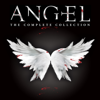 Angel - Angel, The Complete Series  artwork