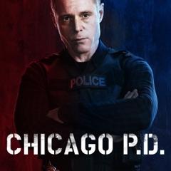Chicago PD, Staffel 1