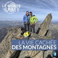 Télécharger Le monde de Jamy : La vie cachée des montagnes Episode 1