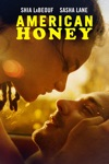 American Honey wiki, synopsis